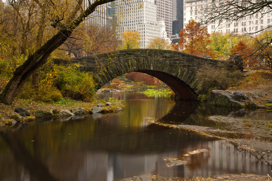 Gapstow-bridge-central-park