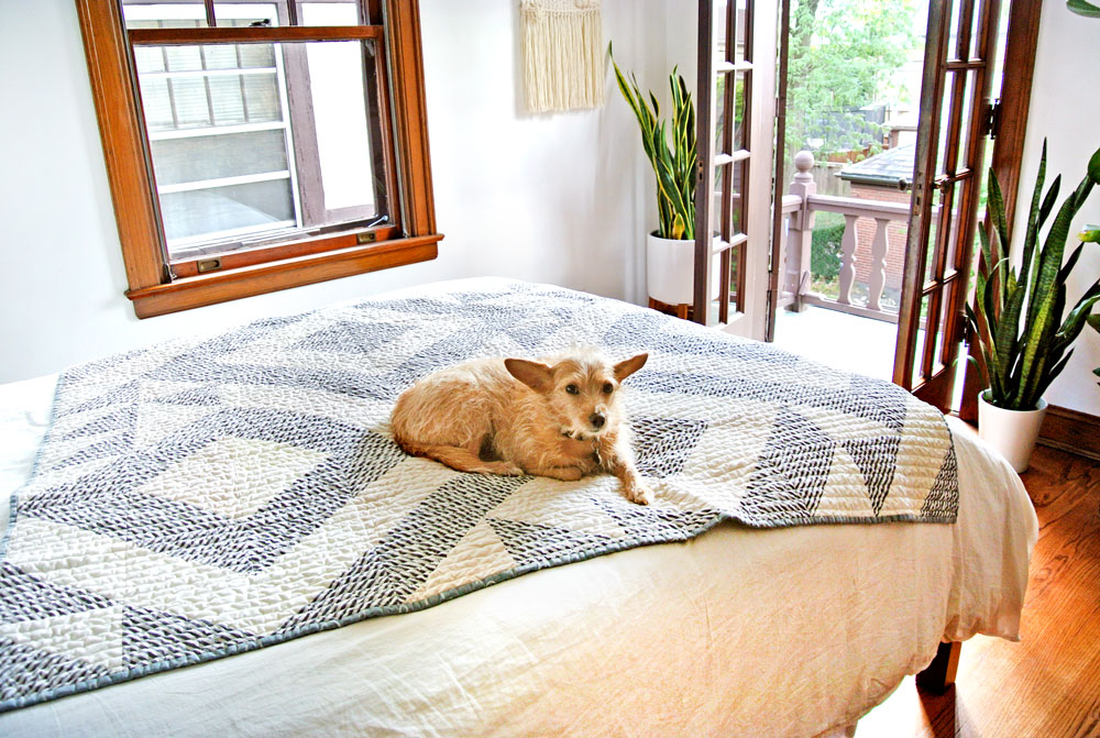 My little quilt dog sure loves a freshly washed quilt. Check out this post on prewashing fabric before quilting and also who to wash and care for a quilt
