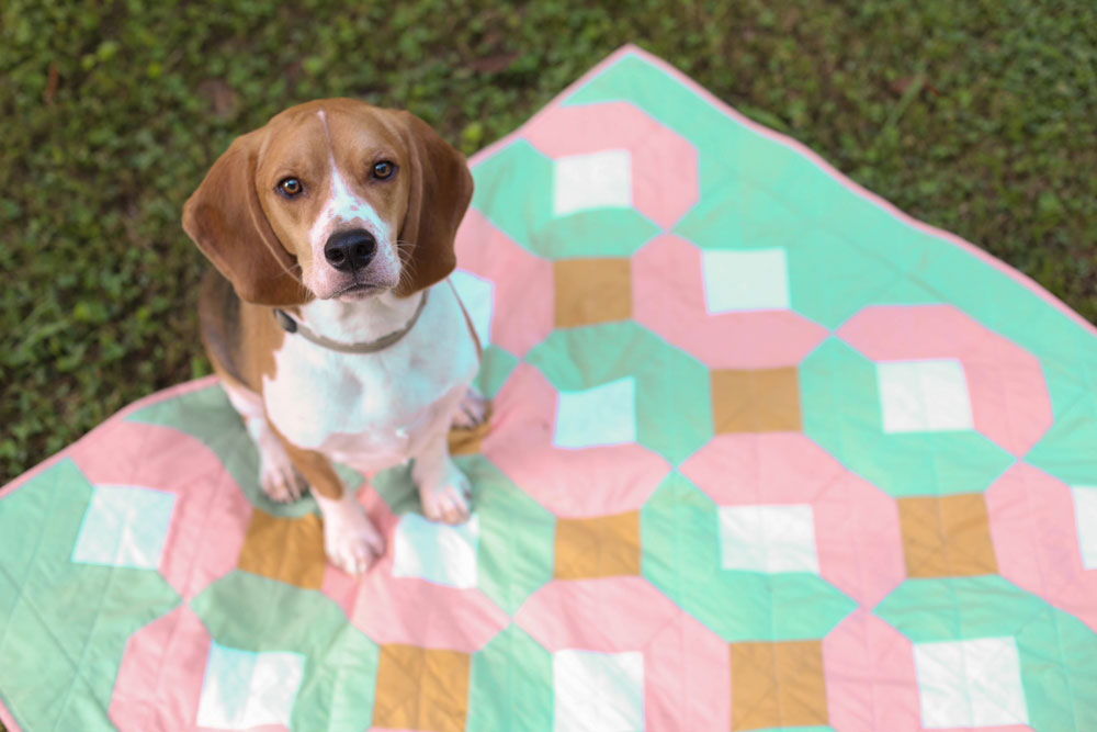 I'm a sucker for a cute dog on a quilt! The Glitter and Glow quilt pattern is beginner friendly and comes in king, queen, twin, throw and baby quilt sizes.
