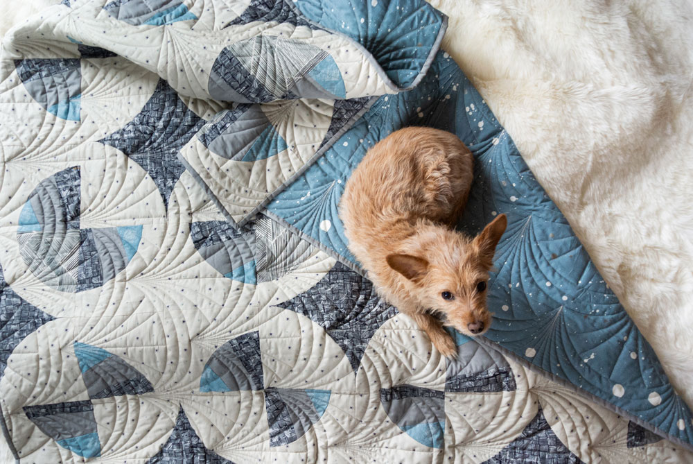 This Great Gatsby inspired Modern Fans quilt kit uses icy blues, grays and metallic silver fabric to bring elegance and pizzazz to a cozy quilt. suzyquilts.com #quiltdog