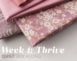 Thrive Quilt Sew Along: Week 1: Pick Your Fabric