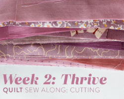 Thrive Quilt Sew Along: Week 2: Cutting