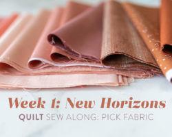 New Horizons Quilt Sew Along: Week 1: Pick Fabric
