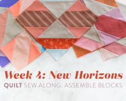New Horizons Sew Along Week 4: Assemble Blocks